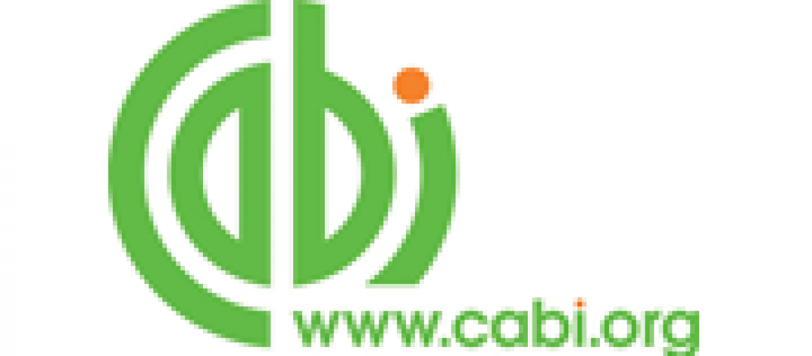 CABI re-index improves searching and retrieval for database products