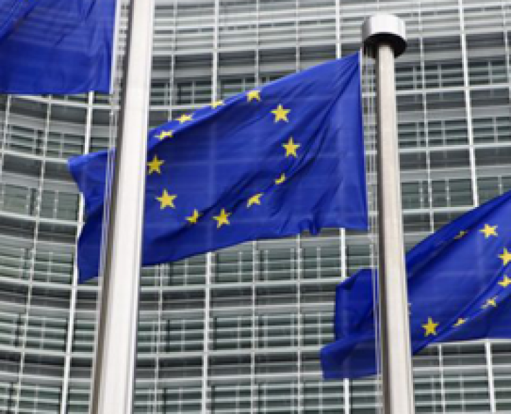 EC sets open access policy objectives under Horizon 2020 programme