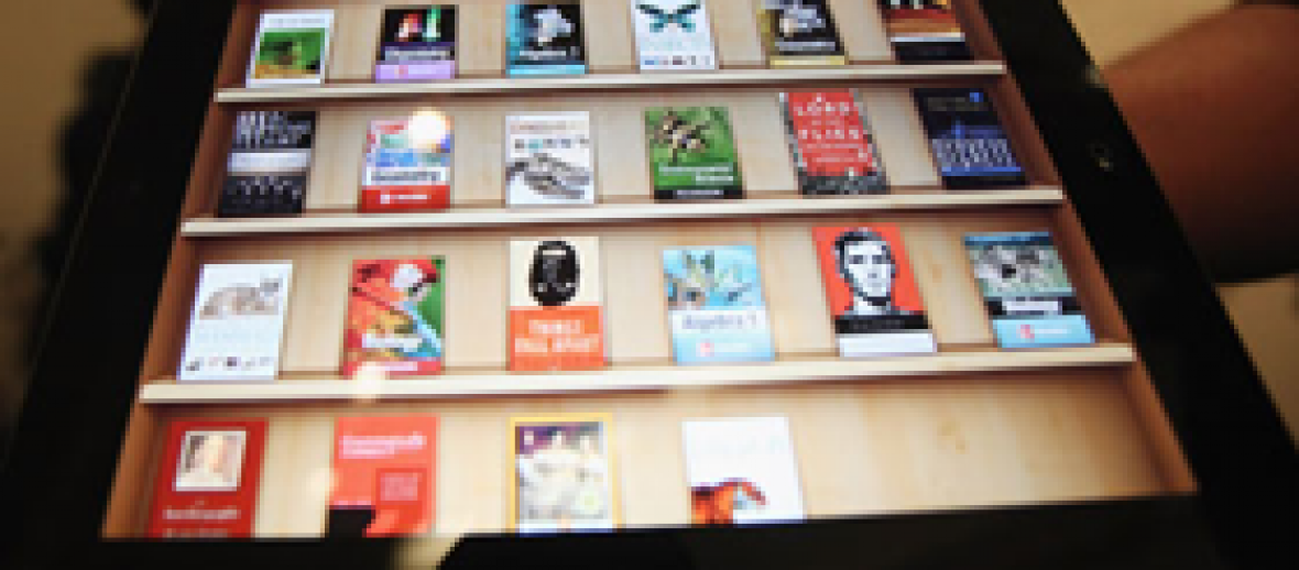 E-Book User Base Expands to 24.5% of Adult Population