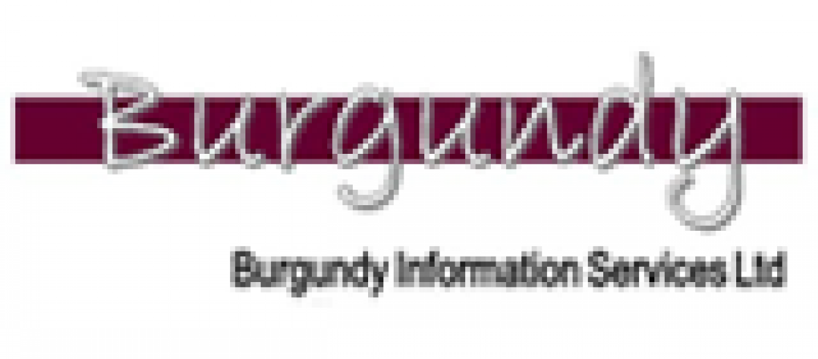 Burgundy to sell Business Expert Press e-Book collections in UK, Ireland and Scandinavia