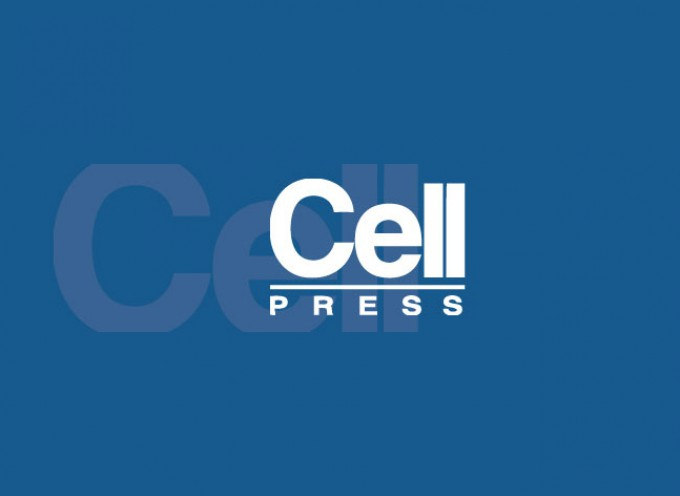 Cell Press Transforms Article Methods Section to Improve Transparency and Accessibility