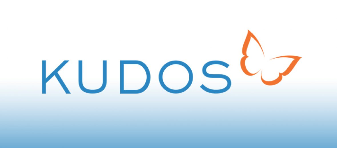 Kudos launching new dissemination management and impact acceleration services
