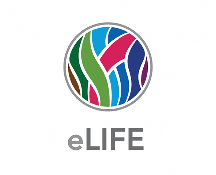 eLife, Coko, Hindawi Limited and Digirati commit to Libero for open-source publishing